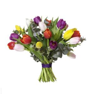Skicka påskblommor - tulpaner