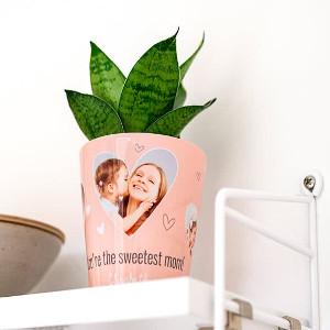 Blomkruka - Personliga presenter