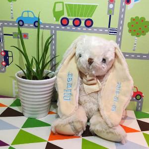 Kanin - Broderad doppresent & till nyfödd